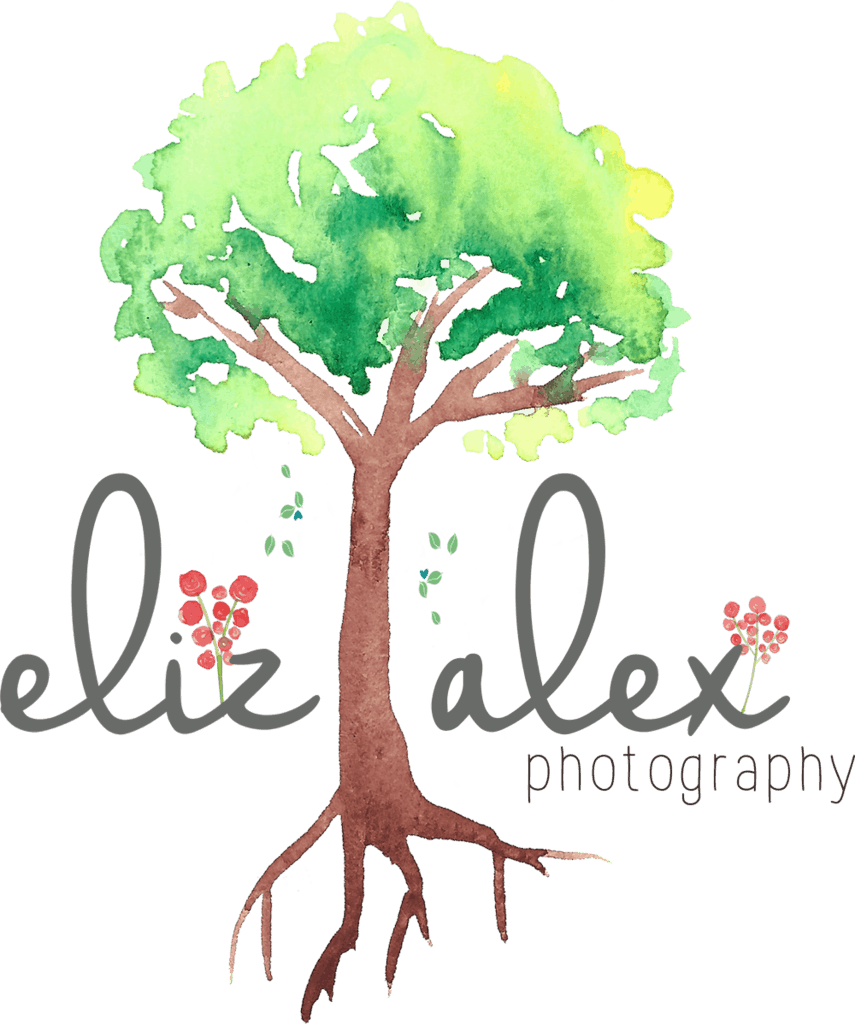 plano texas photographer